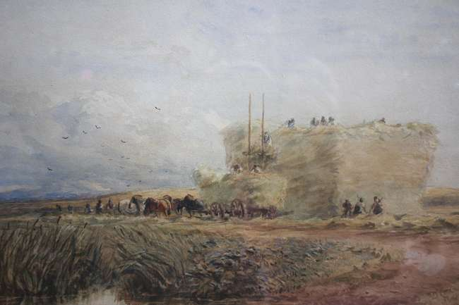 David Cox ROI RWA (English