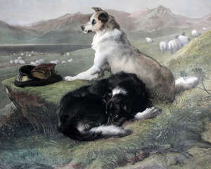 Charles G. Lewis after Landseer, 'Colly Dogs' print ,1856