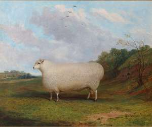 Fine Art Auctions, Bristol Auction Rooms